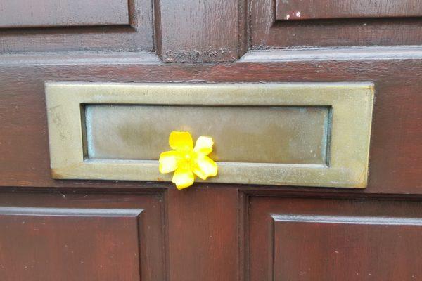 Letterboxflower